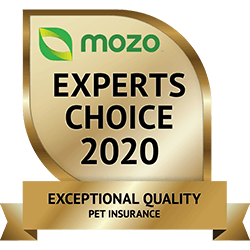 Bupa Pet Insurance – Help Protect Your Pet From The Unexpected